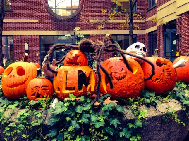 Penn Law LLM Pumpkin Carving